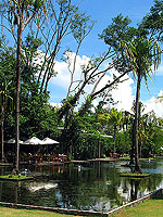 [The Ficus] : The Sarojin, Promotion, Phuket