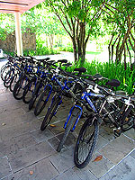 Bike Rental / The Sarojin