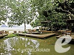 Pond : The Tubkaak Krabi Boutique Resort, Free Wifi, Phuket