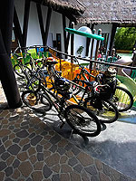 Bicycle : The Vijitt Resort Phuket, Private Beach, Phuket