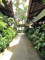 Pathway : The White House Beach Resort & Spa, Choeng Mon Beach, Phuket